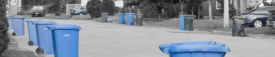 rue avec les bacs bleus